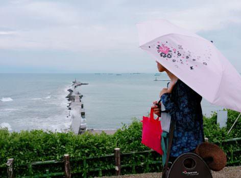 【雨傘推薦】雨傘家族 の 《Diana》台灣文創繽紛花語遮光降溫三折傘 ➽ 當作陽傘與雨傘的高級兩用傘