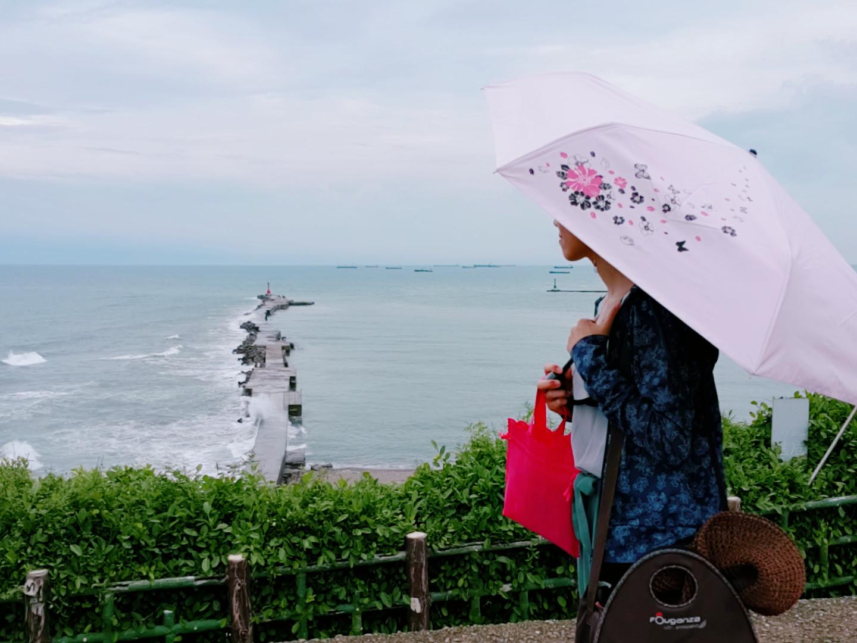 【雨傘推薦】當作陽傘與雨傘的高級兩用傘 ➽ 雨傘家族 の 《Diana》台灣文創繽紛花語遮光降溫三折傘